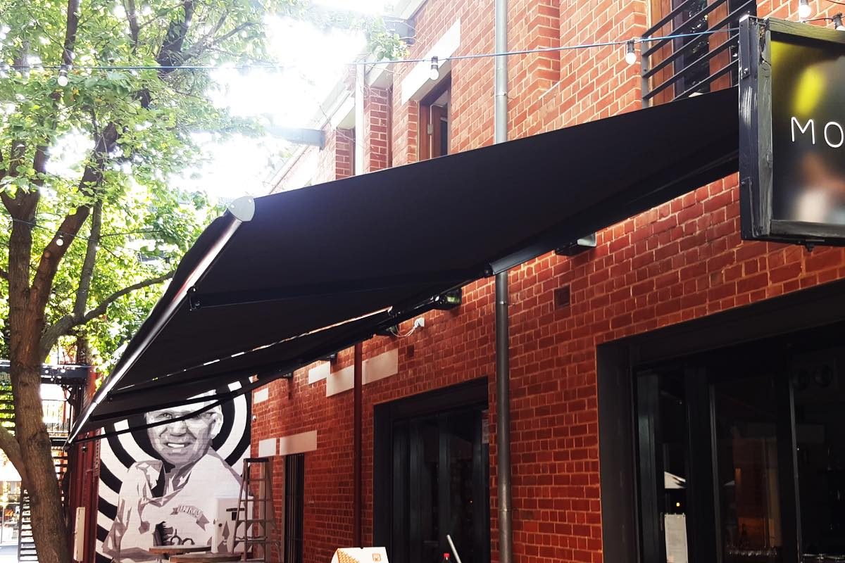 motorised folding arm awning Mothervine Adelaide SA